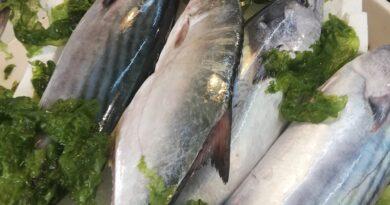 pesce nella dieta mediterranea