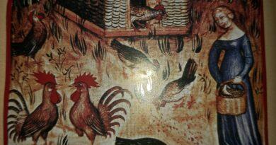 Medioevo carne regina banchetti