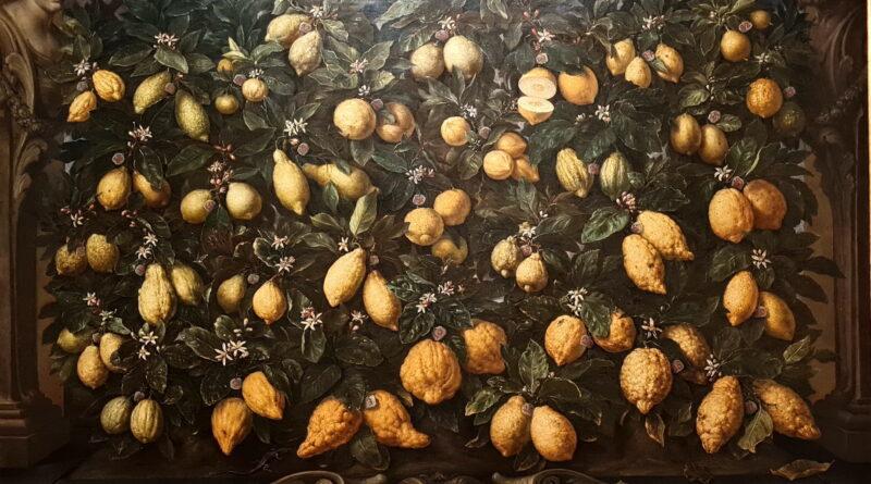 Malangoli, cedri e limoni, 1715, Bartolomeo Bimbi