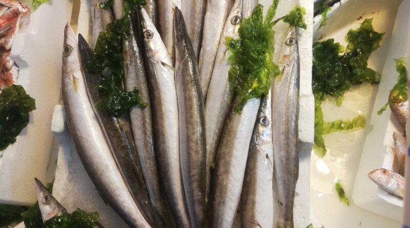 La dieta dei pellegrini, pesci, molluschi e carne