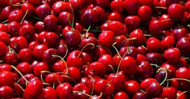 Fragole e ciliegie il rosso della Primavera